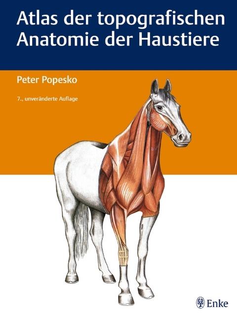 Atlas der topografischen Anatomie der Haustiere von Peter Peter ...