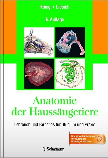 Anatomie der Haussäugetiere von Horst Erich König | ISBN 978-3-7945 ...