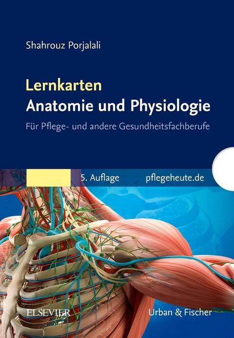 Lernkarten Anatomie und Physiologie von Shahrouz Porjalali | ISBN ...