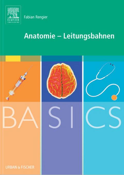 eBook: BASICS Anatomie - Leitungsbahnen von Fabian Rengier | ISBN ...
